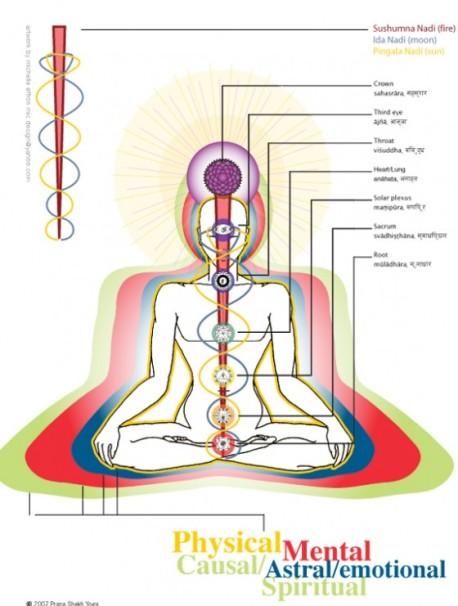 nadis-energy-channels-that-carry-prana-life-force-e1354793903775
