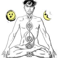 Pranayama: Aprendendo a arte da respiração equilibrada