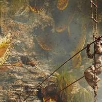 As Abelhas dos Himalayas que produzem mel alucinógeno