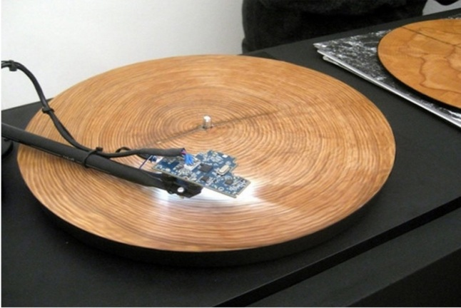 disco de árvore