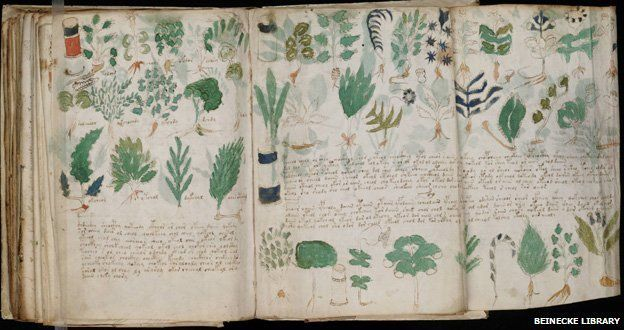 _68289512_new_3voynich_manuscript_(178)