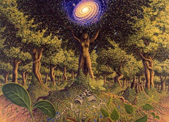 treeincarnation