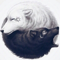 Aprendendo a Equilibrar o seu Yin e Yang
