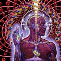Psique, Emoções e a Física Quântica