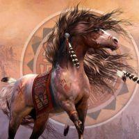 10 Provérbios Ameríndios para Inspirar o Buscador Sábio que há em Você