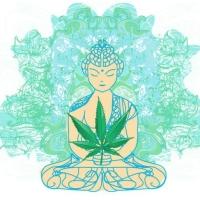A Conexão entre a Meditação e a Cannabis